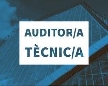SP-CAT-AuditorTecnic.jpg