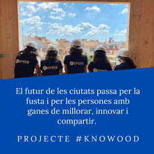 2020-Professores proj Knowood.png