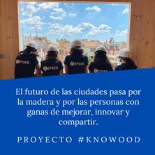 2020-Profesoras proj Knowood.png